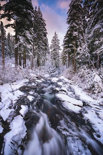 Paradise River Cascades