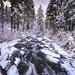 Paradise River Cascades by Travis Rhoads