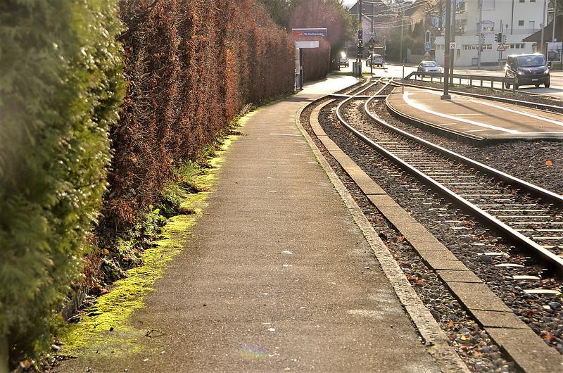 Railway line 11.12.2018