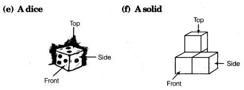 NCERT Solutions for Class 8 Maths Chapter 10 Visualising Solid Shapes 13