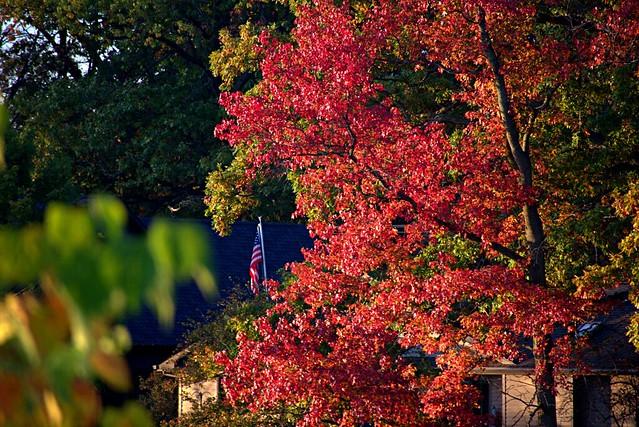 Autumn America