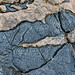 Cottonwood Canyon - fine details in limestone - Death Valley