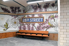 Reopening of the 28 St (6) Station