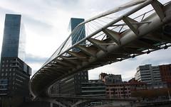 Puente Zubizuri desde Paseo Campo de Volantín(3)