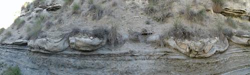 Megasismitas en depósitos lacustres - Rambla de los Pilares, Castilléjar (Granada, España) - 05