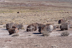 Pieces of petrified wood split that has now turned the prehistroic log into crystal stone minerals at the Petrified Forest National Park in Arizona