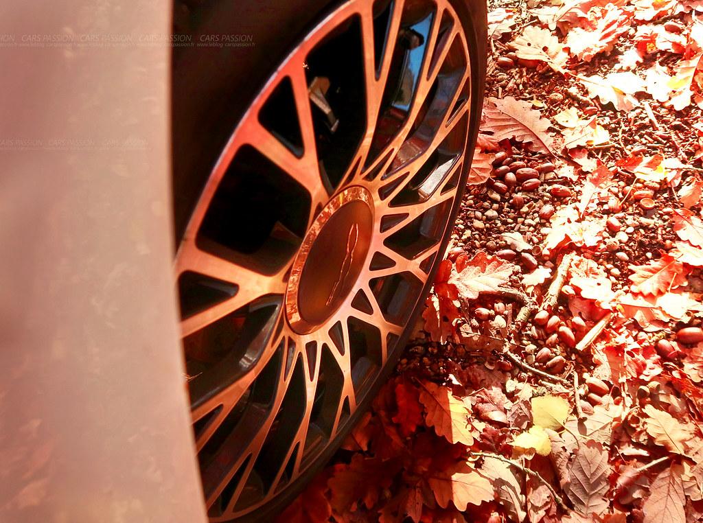 Fiat 500 Autumn