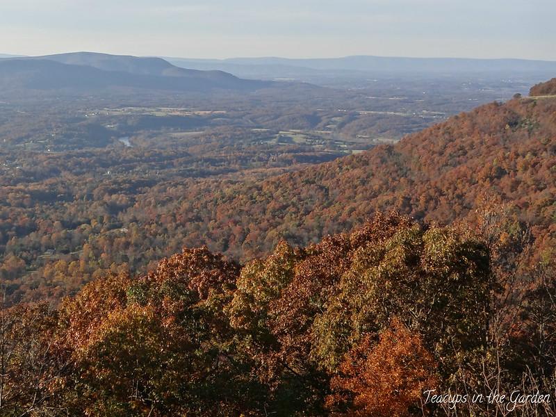 12-Shenandoah Valley