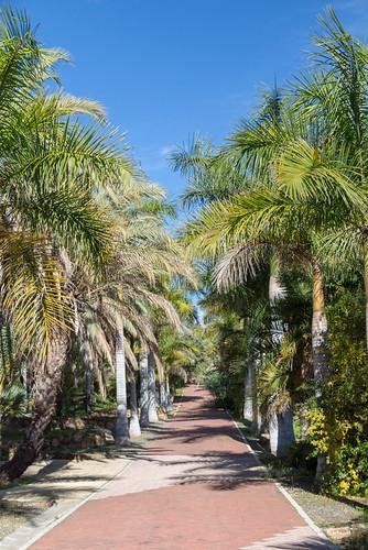 Malaga Botanical Garden