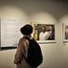 Windrush Exhibition22