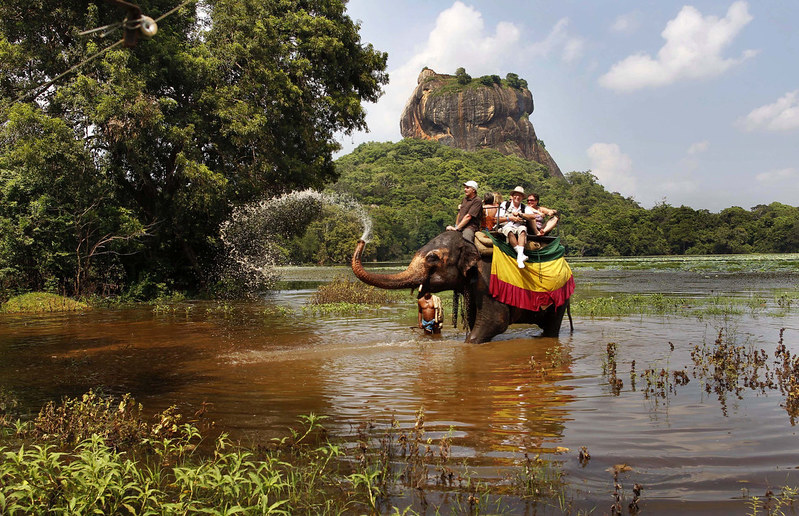 Elephant Safari3-sm