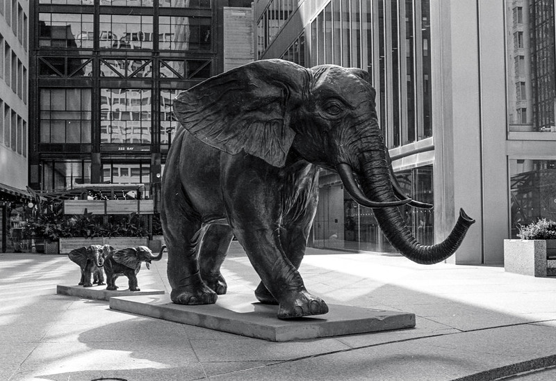 Three Bronze Elephants_
