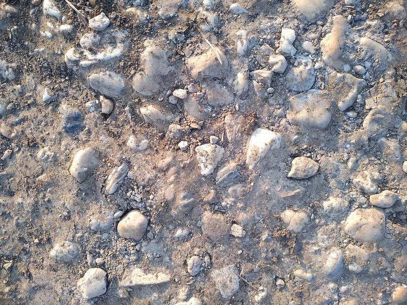 Ground Texture 10