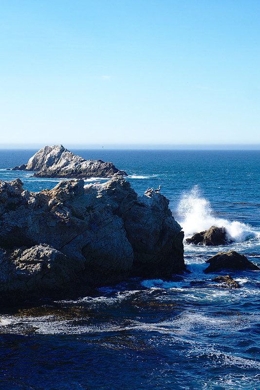 Wave on rocks, South Shore trail, Point Lobos