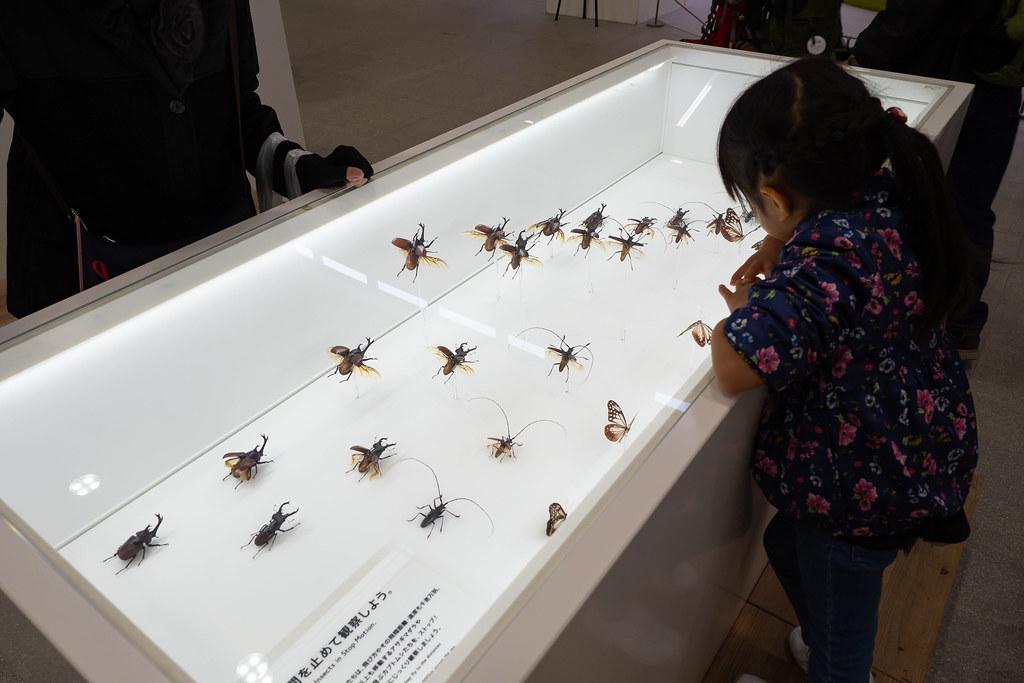 TAKAO_599_MUSEUM-15