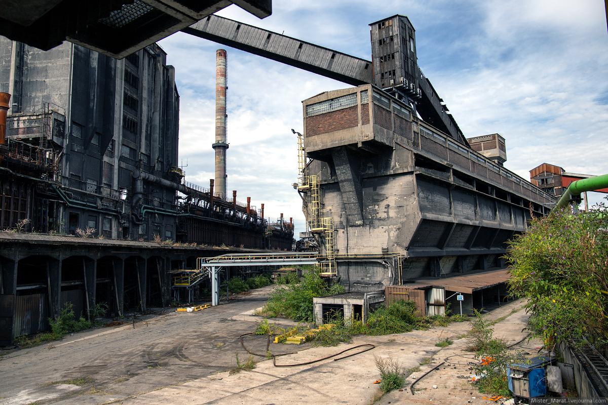 грациозная птица, смотреть фото заброшенных заводов стиле