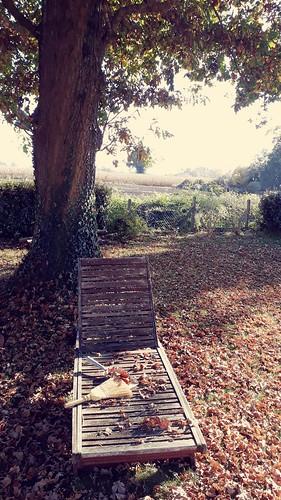 Les feuilles mortes se ramassent à la....