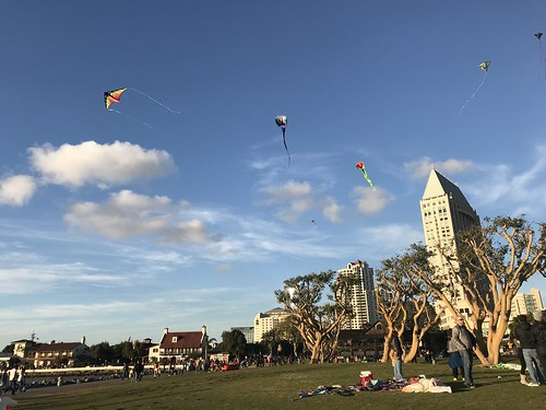 Kites at Embarcadero Marina Park
