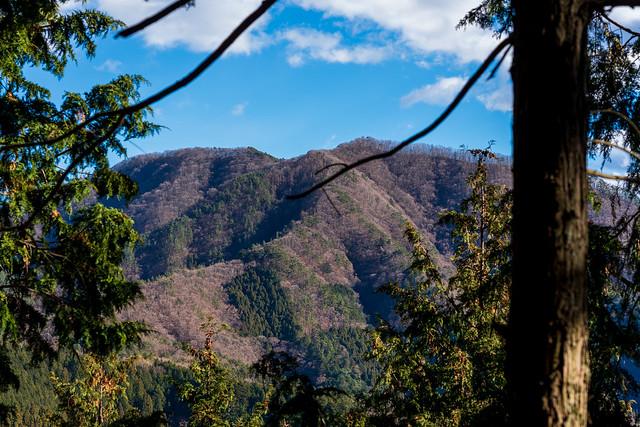 百蔵山手前で観る扇山