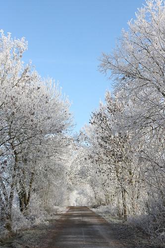 Winterspaziergang