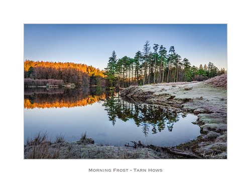 Morning Frost - Tarn Hows