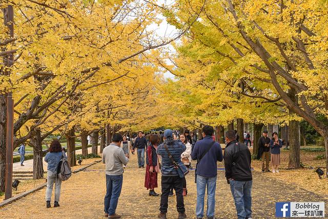 國營昭和紀念公園 銀杏-34