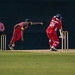 Cricket_Men's_50_Overs