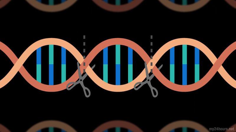 Ilustrasi: Pengeditan gen