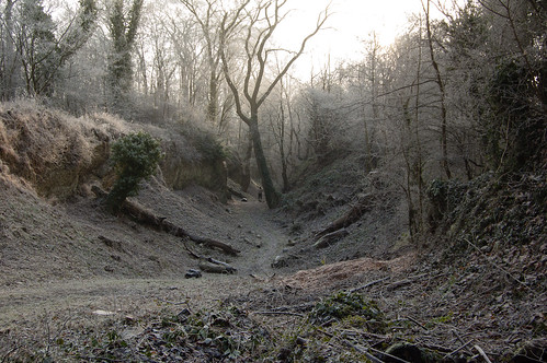 Winter scene, Wrens Nest NNR