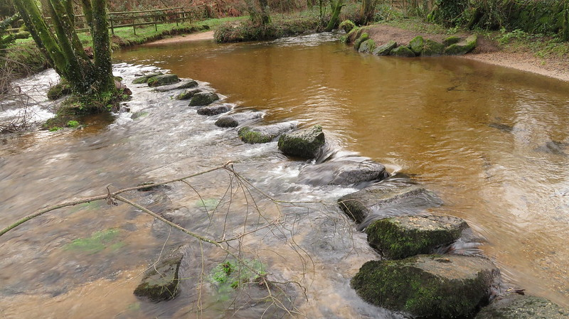 Stepping Stones in North Bovey