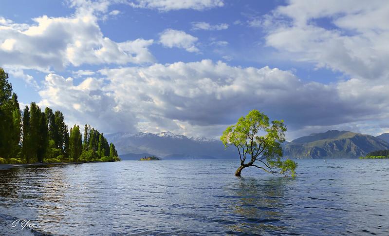 New Zealand - Wanaka