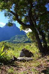 Le trône de Mafate, sorcier marron, sur Le Piton Bronchard à Roche Plate, Reunion Island