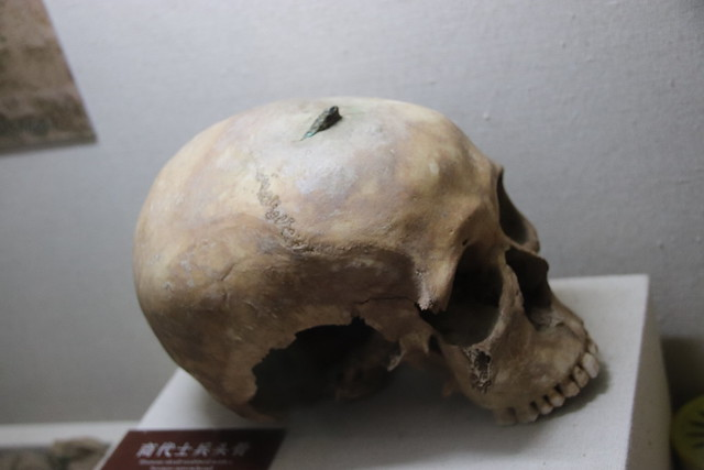Skull of Shang Soldier, Canon EOS 800D, Sigma 18-200mm f/3.5-6.3 DC OS HSM [II]
