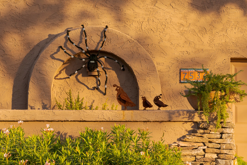 A house is decorated with artwork of a family of quail and a giant spider that was added for Halloween in the Buenavante neighborhood of Scottsdale, Arizona