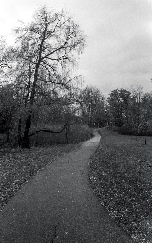 Path from Morrison Heights