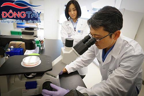 Các nhà khoa học Nhật Bản đang nghiên cứu liệu pháp tế bào gốc để điều trị Parkinson
