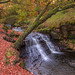 Roddlesworth Woods Waterfall HDR