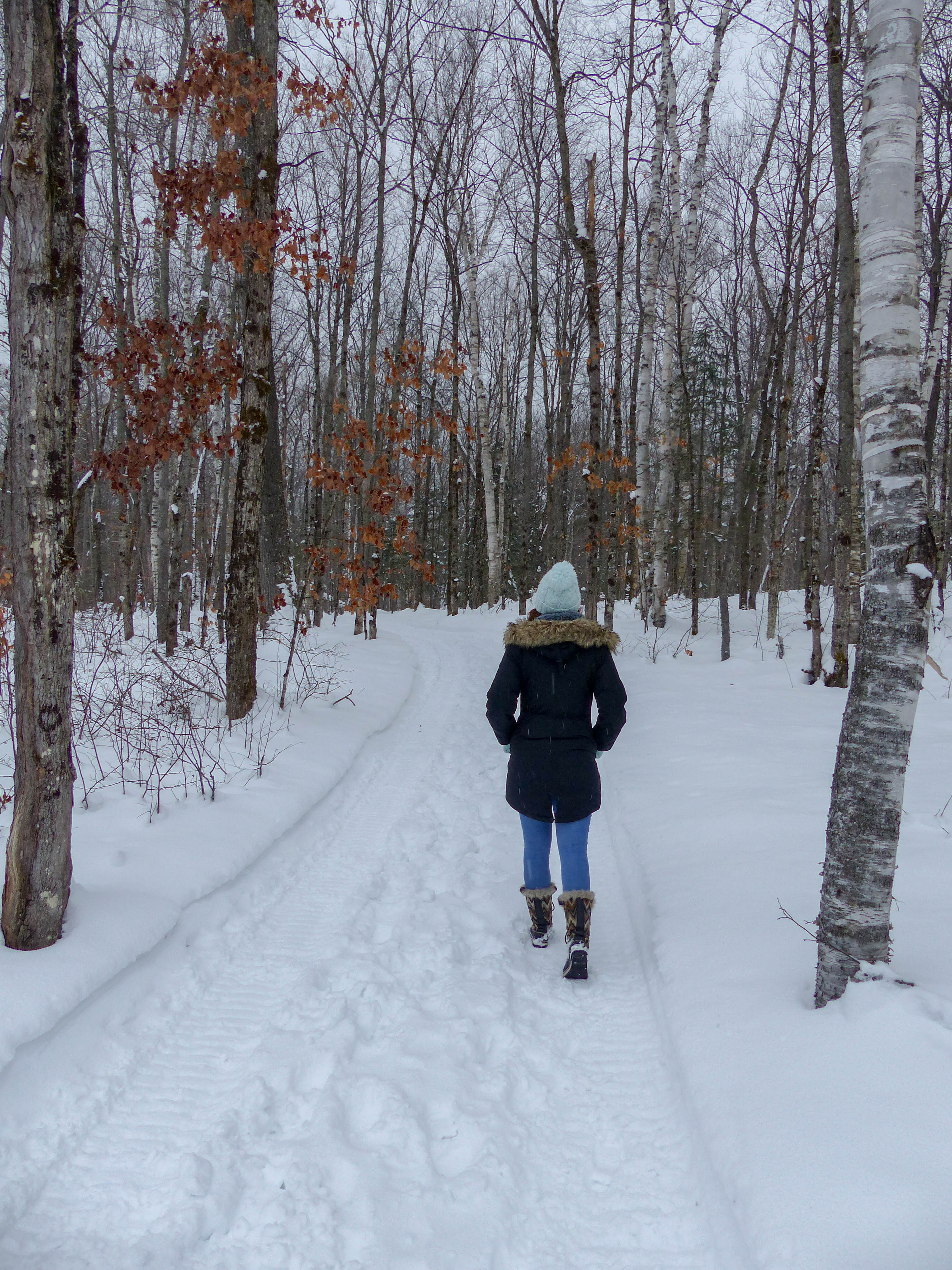 Arrowhead Provincial Park winter trails