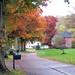 Autumn in Arbordale