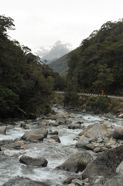 Hollyford River, New Zealand