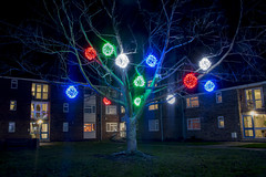 Tree Basket lights