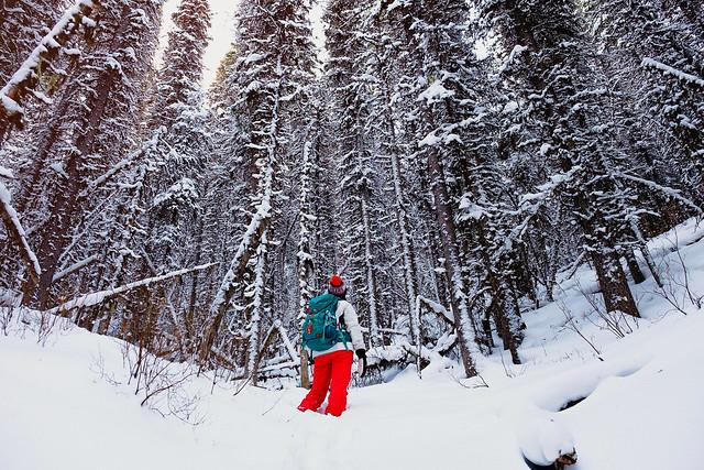 Snowshoeing - Rawson Lake - Jan 2019-17