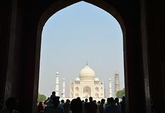 India 83