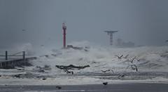 Noorderhavenhoofd