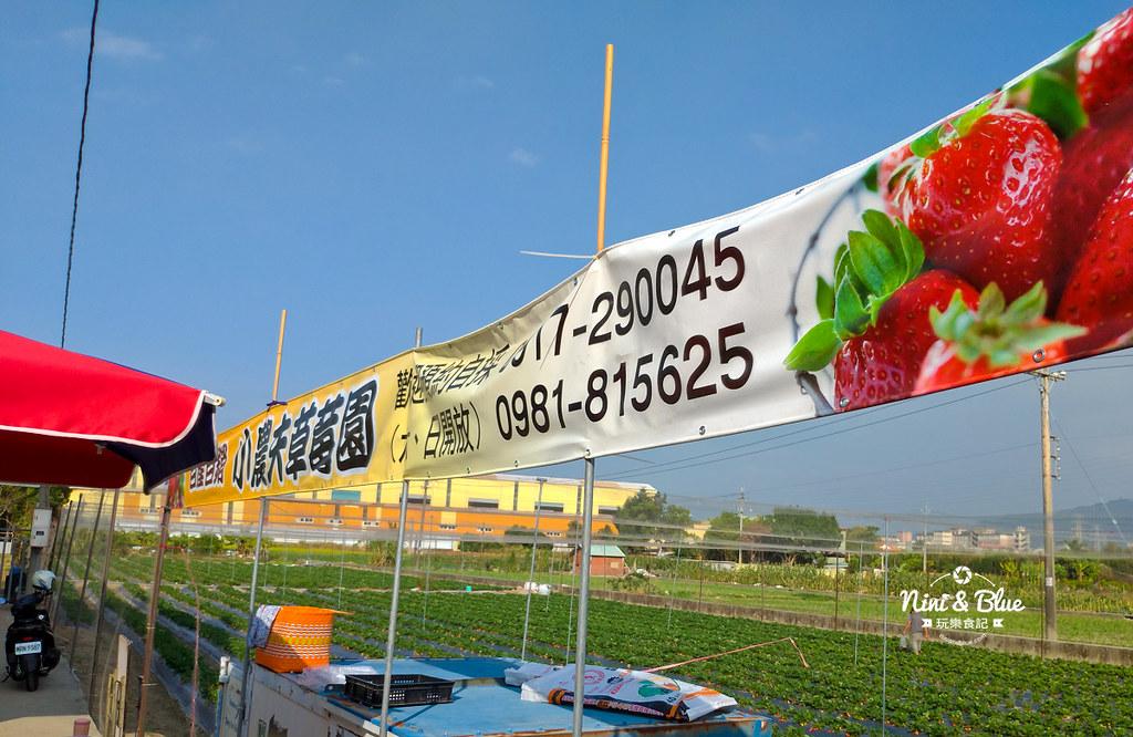 小農夫草莓園06