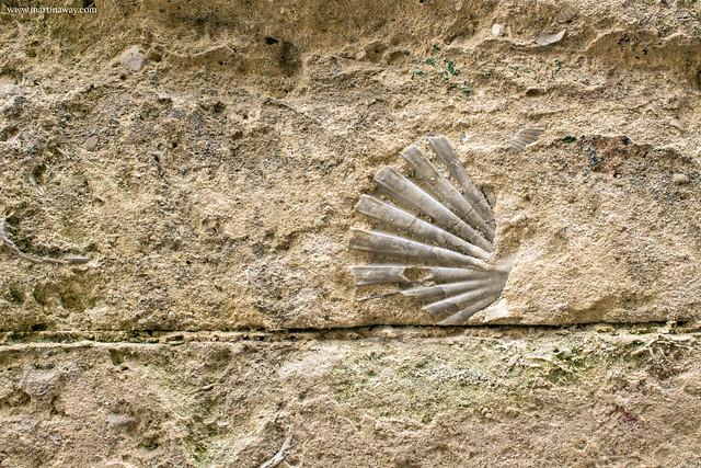 Curiosità su Matera: Calcarenite