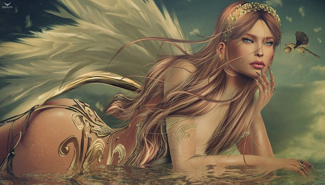 Dreamlove~Angel in Gold