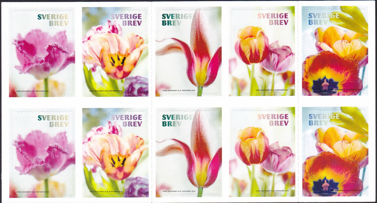 Sweden - Tulips (January 10, 2019) booklet pane of 10