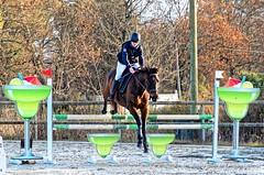 Venteille-concours-Marcheprime-2018-12-09-105 (Elo) - Photo of Marcheprime