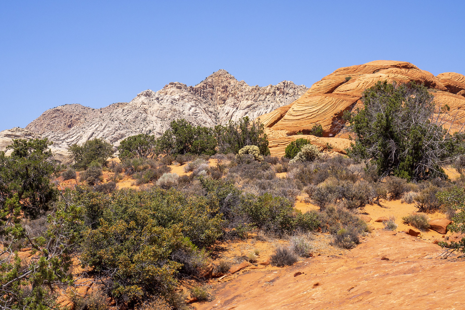 Colors of Snow Canyon